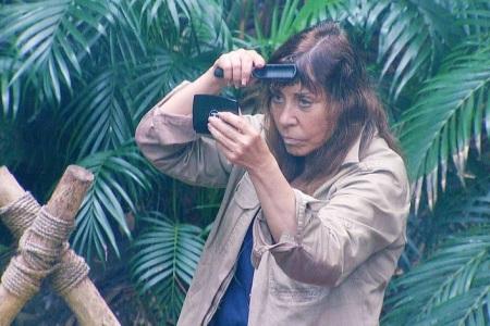 Tina York